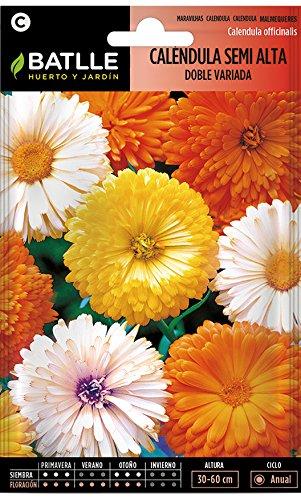 Semillas de Flores - Caléndula semi alta doble variada - Ba