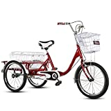 OHHG Triciclo Adultos Estructura Acero Alto Carbono una Sola Velocidad 20 Pulgadas Cesta la Compra Bicicleta Crucero 3 Ruedas Personas Mayores, Mujeres, Hombres, Deportes al Aire Libre (tamaño: Rojo)