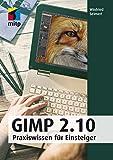 GIMP 2.10: Praxiswissen für Einsteiger (mitp Anwendungen) (Broschiert)