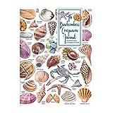The Beachcomber's Companion PVC Multi-Pocket Cover Journal