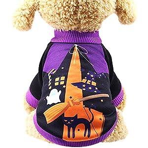 OuYou Pet Vêtements pour Chien Chiot Tops Halloween Citrouille sorcière Costume Deux Jambes Automne Hiver Chaud Costume Se déguiser fête d'halloween de Noël de Pâques Festival d'activité Apparel
