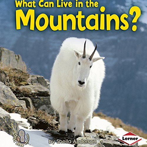 What Can Live in the Mountains? copertina