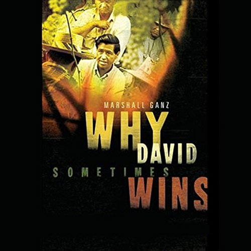 Why David Sometimes Wins audiobook cover art