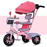 Bicicletas infantiles con Pedales Niños Niñas Triciclo 1-3-6 de la Bici del bebé niños del Cabrito Joven de Bicicletas Años de Edad Carretilla Grande HUYP (Color : Pink)