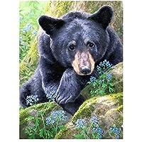 DIYペイントバイナンバー キャンバス油絵 黒熊動物 キット 子供&大人用 幅16インチ x 長さ20インチ ペイントブラシ付き diyの木製フレーム16*20