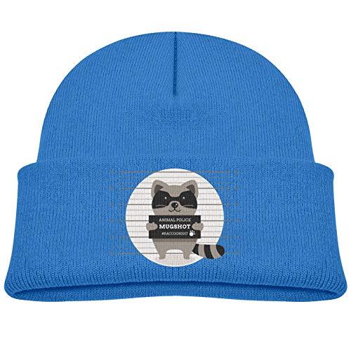 SHUANGFEI Kids Knitted Beanie Hats,Raccoon,Skull Cap Winter Hip-hop Hat Headwear for Boys Girls Baby Blue