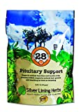 Silver Lining Herbs 28 Pituitary Support - Supports Equine Normal Function and Health Of the Pituitary - Natural Herbal Blend May Help Pituitary Dysfunction in Senior Horses - 1 lb Bag