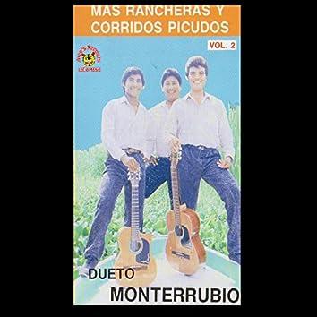 Mas Rancheras Y Corridos Picudos, Vol. 2