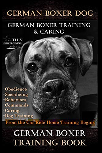 German Boxer Dog, German Boxer Training, & Caring By D!G THIS DOG TRAINING, Obedience Socializing Behaviors Commands Caring: Dog Training From the Car Ride Home Training Begins German Boxer Training