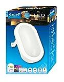 Garza Lighting Outdoor - Plafón LED Oval de Exterior, Potencia 12W, Protección contra Agua y Polvo IP54, Luz Neutra 4000K, color Blanco