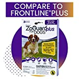 Best Flea And Tick Prevention For Dogs - ZoGuard Plus Flea and Tick Prevention for Dogs Review