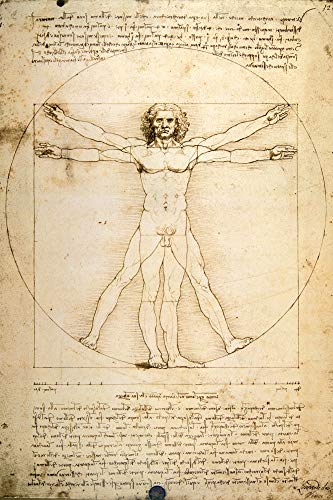 1art1 Leonardo Da Vinci - Vitruvianischer Mensch VI Poster 91 x 61 cm