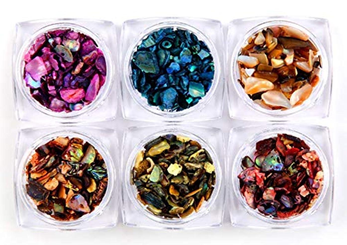 決して文明作者ェルネイル 貝殻石 6色セット 自然風 超薄 シェルフレーク (シェル)