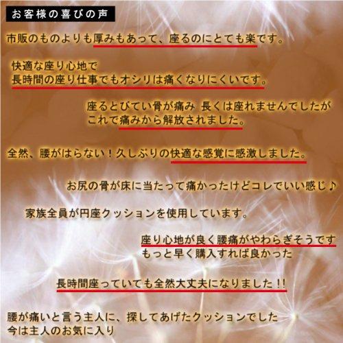 メイダイ『勝野式医学博士の低反発円座クッション』