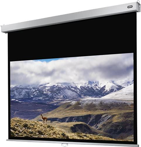 celexon manuell ausziehbare Heimkino- und Business-Rollo-Beamer-Leinwand 4K und Full-HD mit Slow-Return Professional Plus - 300 x 187 cm - 16:10