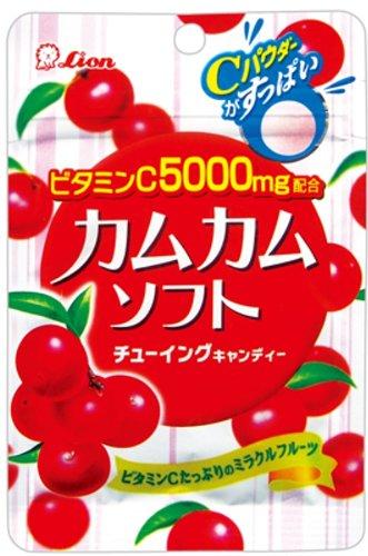 ライオン菓子 カムカムソフトチューイングキャンディー 42g×10袋