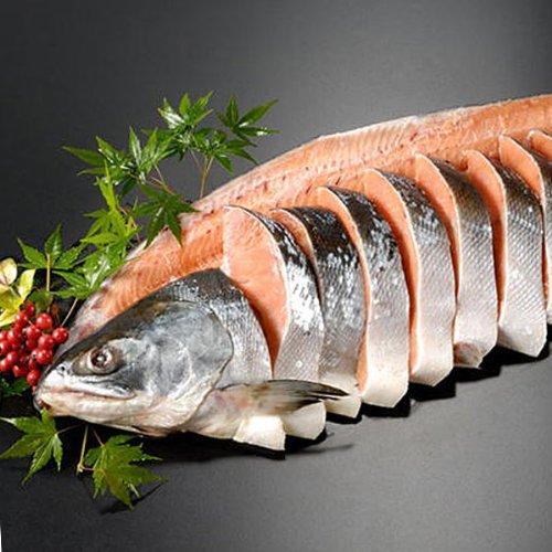 サーモン専門店岩松 天然時鮭一本物 姿切り 約2.3kg 化粧箱入