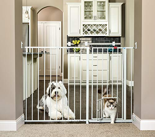 Carlson Maxi Extra Tall Pet Gate, Expands 51-59 Inches Wide -  Carlson Pet Products, 1210HPW