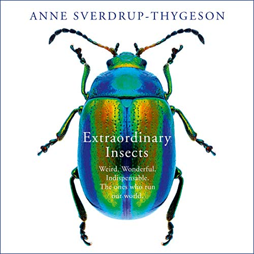 Extraordinary Insects audiobook cover art