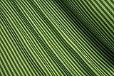 mollipolli-Stoffe Bündchen glatt gestreift Kiwi grün 0,5m