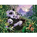 Animal Panda Hot Diamond Bordado Punto de Cruz Bordado de Diamantes All Stone Photo Jungle Panda Family Mosaic Set 50x60cm