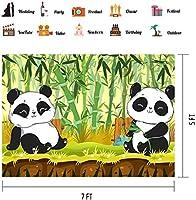 HD漫画パンダ背景写真7X5FTかわいいパンダ竹子供子供新生児写真の背景壁紙部屋壁画小道具BJLSPH316