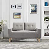 GUNJI Loveseat Sofa Modern Love Seats Furniture Mid Century Two Seat Couch for Small Space Living Room Fabric Loveseat with Solid Wood Legs (Grey)