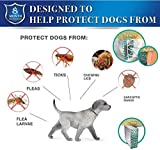 IMG-2 collare antiparassitario cane per pulci