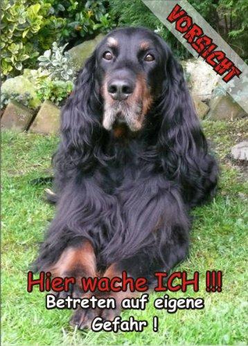 INDIGOS UG - Türschild FunSchild - SE514 - ACHTUNG Hund Gordon Setter - für Käfig, Zwinger, Haustier, Tür, Tier, Aquarium - DIN A4 PVC 3mm stabil