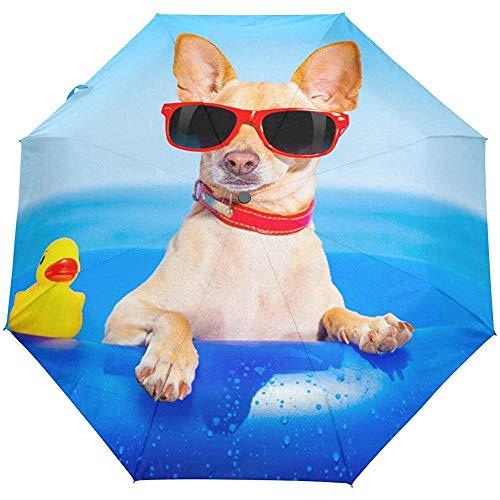para Tomar el Sol Chihuahua Perro en el colchón Paraguas de Viaje...