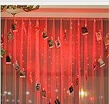 Herzförmige LED-Lichter des Mannmädchens ins Wellenvorhanglichtliebeslicht-Klipplicht-Fernbedienungsmodelle 2 * 1.5m