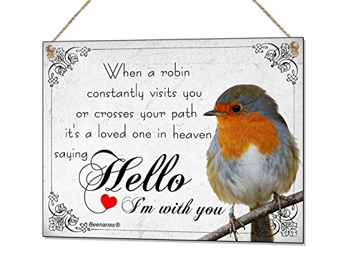 Beenanas Robin Sympathy Loved One In Heaven Metal Hand Made Plaque Sign Gift