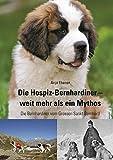 Die Hospiz-Bernhardiner - weit mehr als ein Mythos: Die Bernhardiner vom Grossen Sankt Bernhard
