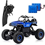 Apsung RC Car,2.4GHz Off Road Monster RC Truck Toys with 2 Rechargeable Batteries,4WD