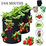 CHDHALTD Portable Potato Growing Bag,Home Balcony Garden Plant Bag with Handles Access Flap,Potato Cultivation Grow Bags,Vegetables Growing Container for Carrot Onion Vegetables