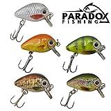 Paradox Fishing Mini Wobbler Set 5 Wobbler (2,5cm 1,5g schwimmend Lauftiefe: 0,6m-1 m) zum Forellen...