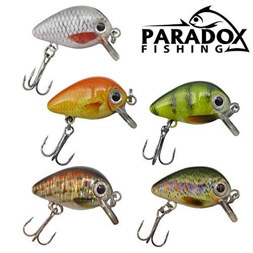 Paradox Fishing Mini Wobbler Set 5 Wobbler (2,5cm 1,5g schwimmend Lauftiefe: 0,6m-1 m) zum Forellen Angeln oder als Barsch Köder - Wobbler Forelle Barsch Wobbler
