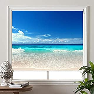 """PASSENGER PIGEON Blackout Window Shades, Premium UV Protection Water Proof Custom Roller Blinds, Printed Picture Window Roller Shade,20"""" W x 36"""" L, SEA-2"""