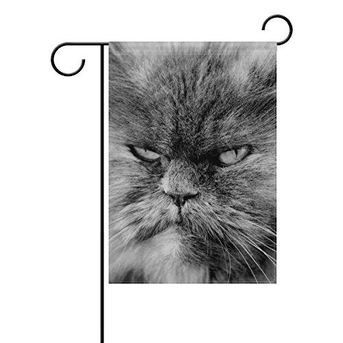 ALAZA Doppelseitige Serious Eyes Lustige graue Persische Katze Polyester Haus Garten Fahne Banner 30,5 x 45,7/71 x 101,6 cm für Hochzeit Party Allwetter, Polyester, Multi, 12x18