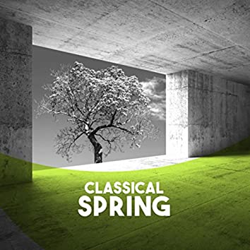 Classical: Spring