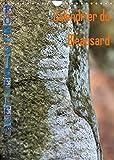 Calendrier du Bleausard (Calendrier mural 2022 DIN A4 vertical): Le calendrier de tous les grimpeurs fans d'escalade à Fontainebleau (Calendrier mensuel, 14 Pages )