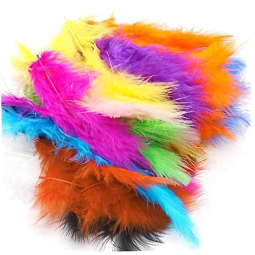 Froiny 100pcs Piume Colorate Piume Piume in Colori Vivaci per Fai Te Dream Catchers Paralume per Paralumi Orecchini Mestiere Decorazioni per Feste di Nozze