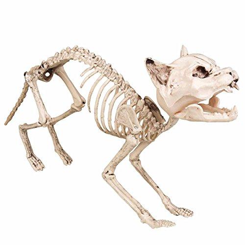 Boland 72156 - Dekoration Katzen-Skelett, Größe 60 cm, Knochengerüst, Deko-Figur, Horrorparty, Karneval, Mottoparty