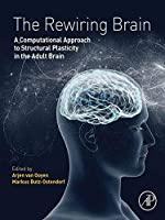 The Rewiring Brain: A Computational Approach to Structural Plasticity in the Adult Brain
