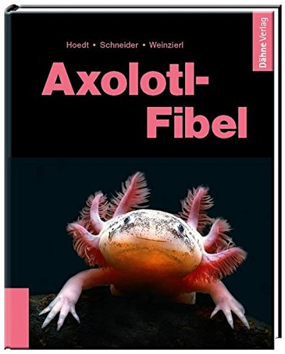 Axolotl-Fibel: Ein Exot erobert unsere Aquarien