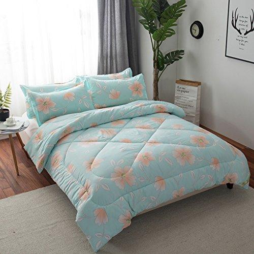 MMM Décolletage d'hiver plus épais Conservez une chambre chaude de dortoir Individuel double taille matelas Literie de printemps et d'automne 1.5-4kg (taille : 220 * 240m (4kg))