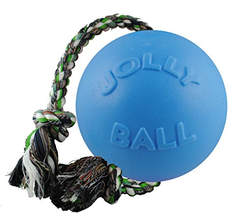 Jolly Pets Romp-n-Roll Rope and Ball Dog Toy, 6 Inches/Medium, Blueberry, Model Number: 606 BB
