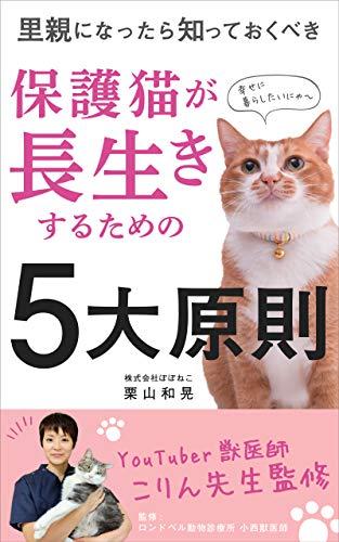 保護猫が長生きするための5大原則