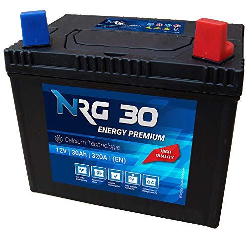 NRG Premium 30Ah 12V Rasentraktor Aufsitzmäher Rasenmäher Batterie +Plus Pol rechts