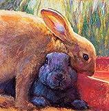 Xpboao Pintura de Bricolaje por números - Conejo cariñoso - para Adultos y niños Kits de Regalo de Pintura al óleo de Bricolaje - Arte decoración del hogar - 40x50cm - Sin Marco